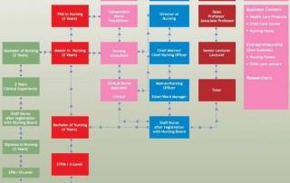 nursing career path