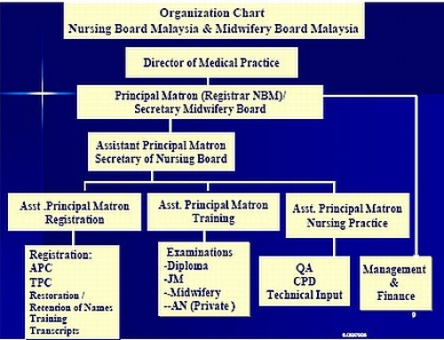 The Organisation Chart of Nursing Board Malaysia