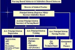 Nursing Board Malaysia Organisation Chart